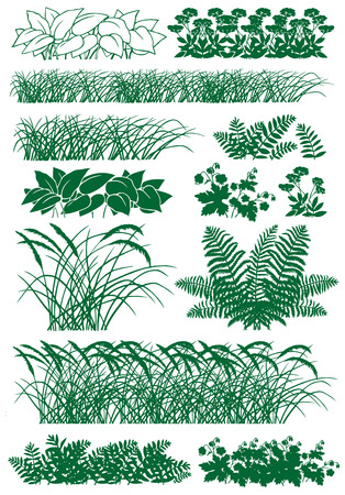 Silhouette image of different types of herbs on a white background. 向量圖像