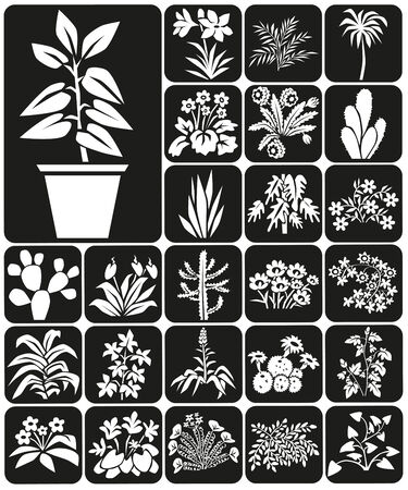 Weiße Symbole Auf Schwarzem Hintergrund Thema Zimmerpflanzen Und ...