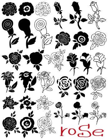 벡터 흰색 배경에 장미와 꽃 봉 오리의 다양한 묘사 벡터 (일러스트)