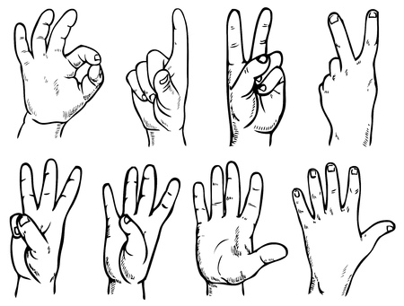 finger ring: Drawing on paper. Image of hands with different gestures. Illustration