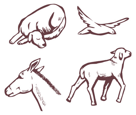 sleeps: sketch on white background animals and birds Illustration
