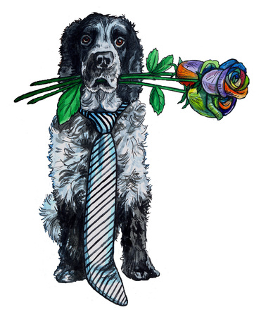 cocker: watercolor illustration of a dog cocker spaniel with a bouquet of colored roses on a white background