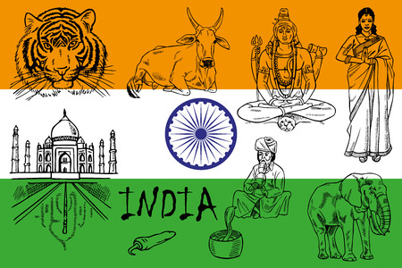 lady cow: illustration on the theme of India. Attractions on the background of the flag.