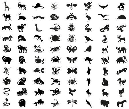 siluetas de elefantes: Iconos de imagen de diferentes animales, insectos, artrópodos y aves. Vectores