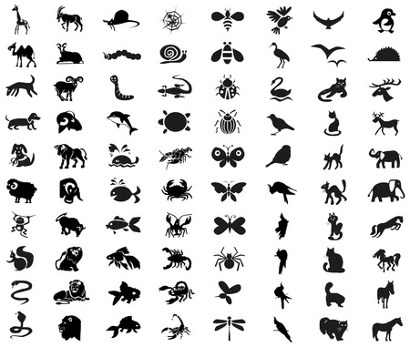 Image icons of different animals, insects, arthropods and birds. Illustration