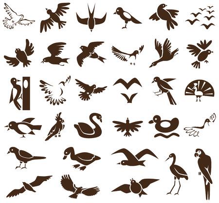 wader: black icons on white background topic of birds, wild world.