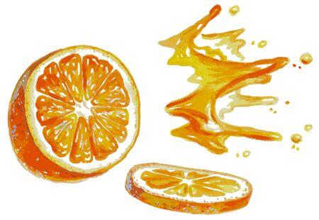 sliced: Ilustraci�n de la acuarela en un fondo blanco rodajas de naranja y jugo de salpicaduras