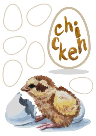 hatched: Watercolor illustration on a white background chick hatched from an egg and an inscription