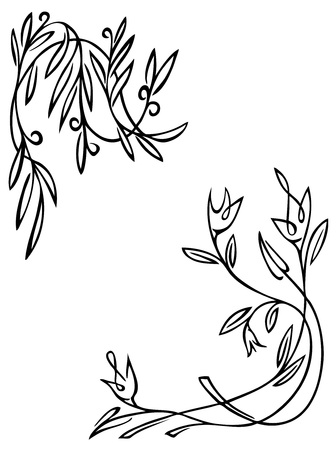 winding: illustration vegetable winding floral pattern on a white background Illustration