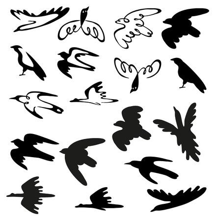 martinet: illustration en noir sur fond blanc stylis� oiseaux de diff�rentes esp�ces