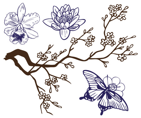 lily flowers: drawing on a white background with a butterfly, flowers and blooming branches