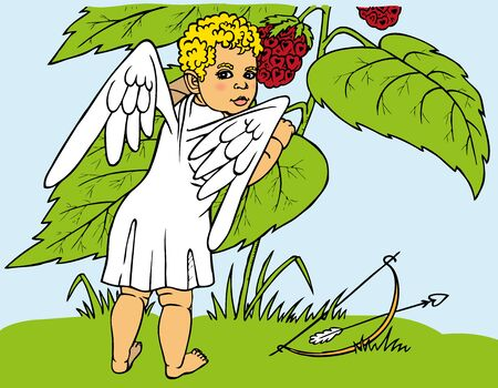 plant stand: Color illustration of Cupid tears curly red berries