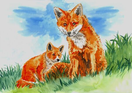 pup: watercolor illustration of a red fox and pup sitting in the green grass