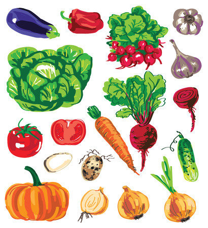 lobule: Preview variety of vegetables and root crops in the form of color on white background.