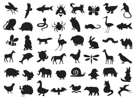 silhouettes of wild and domestic animals, birds and insects on a white background. Illustration