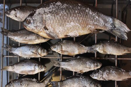 grille: Picture fish big and small crucian carp, which are dried on a grate with salt
