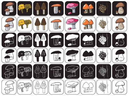 illustration of icons on a black and white background edible mushrooms