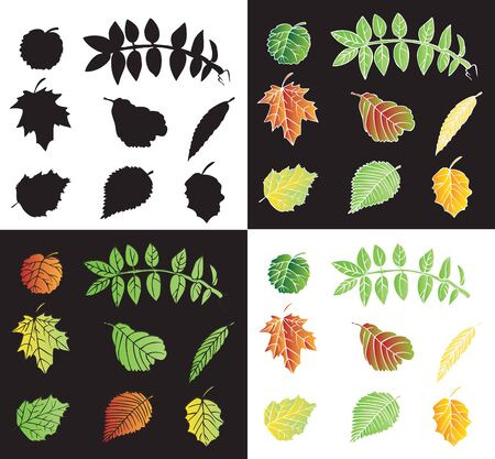 Illustration on black and white background leaves of the tree fall and the silhouette Illustration