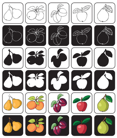 icons color and black and white fruit with Apple, pear, quince, plum, apricot Illustration