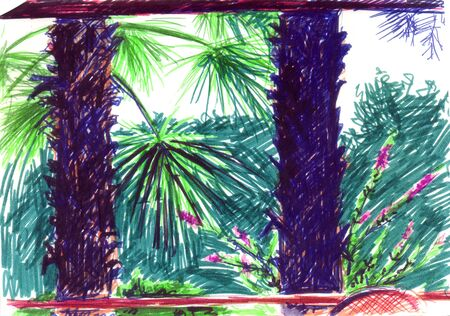 Sketch markers on paper background with southern nature. Color palm trees