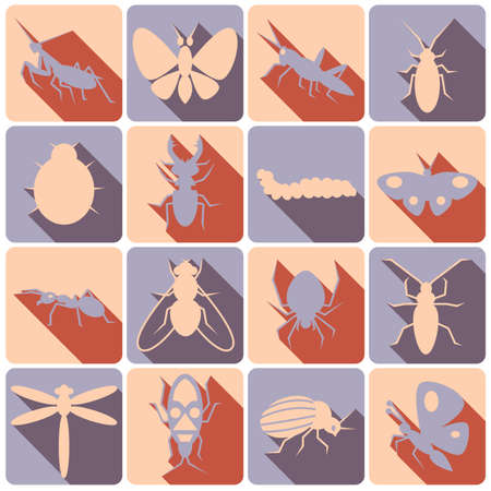 set of colored insects icons with shadows