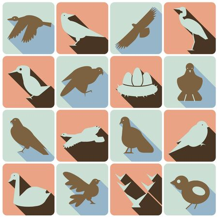 set of color icons wild birds with shadows  イラスト・ベクター素材