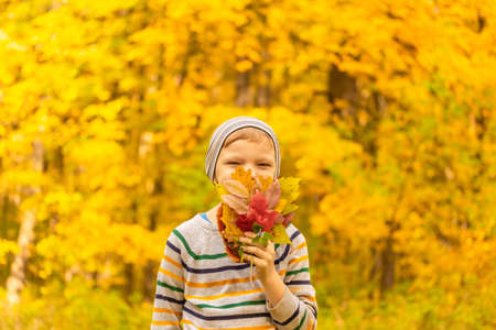 Autumn portrait of a happy boy in the autumn Park. Boy playing with fall foliage. High quality photo Imagens