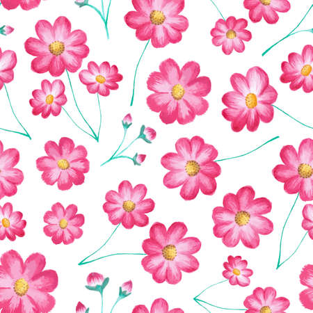 Vector seamless floral pattern with cosmos flowers (pink asters). Watercolor painting, stylish vector illustration with blooming plants isolated on white. Design element for prints, decor, fabric