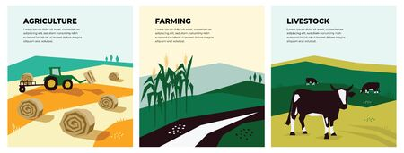 Set of vectors with agriculture, farming and livestock. Illustrations of a tractor, hayfield, haystack rolls, farm animals, cows in pasture, cornfield. Template for banner,poster,flyer, prints, books. Ilustrace