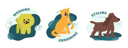 Set of dog care service icons. Concept for pet grooming, styling, washing salon. Isolated vector illustrations with happy puppies of spitz, shiba inu, spaniel. Design of domestic animals for pet shop.