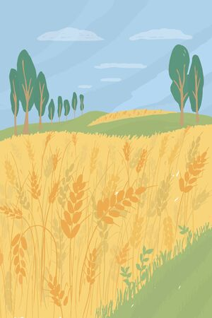 Agricultural landscape with wheat field. Agriculture or farming concept. Harvest season in farm land vector illustration. Summer panorama with ears of ripe wheat, green hills, trees. Nature background