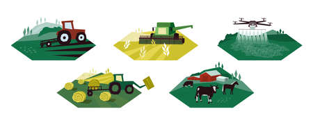 Set of agriculture activity illustrations. Icons of irrigation tractor, farm animals, combine harvester, drone. Vector for farming livestock, dairy industry. Cultivated and plowed land, cow, hay field Ilustração