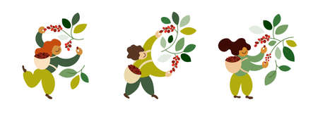 Set of vector illustrations with coffee pickers. People harvesting ripe red berries from trees branches. Happy farmers picking coffee beans in basket by hand. Laborers work on farm. Design for package Ilustração