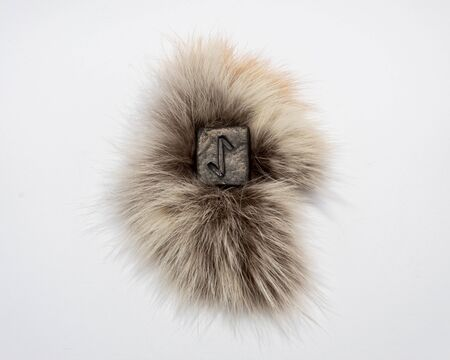 Norse rune Eihwaz, isolated on fur and white background. Abruptness, changes, news.