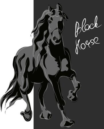 black horse illustration.