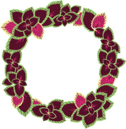 variegated: frame of variegated leaves Illustration