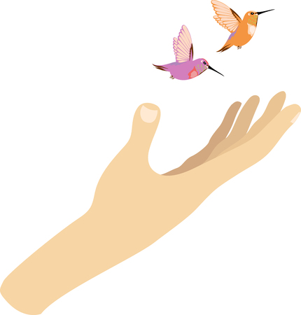 hand and hummingbirds