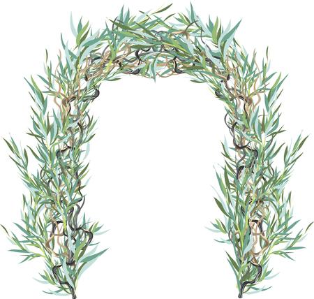 柳の葉からアーチ  イラスト・ベクター素材