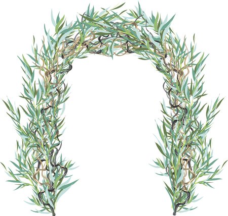 The arch from the leaves of the willow Иллюстрация