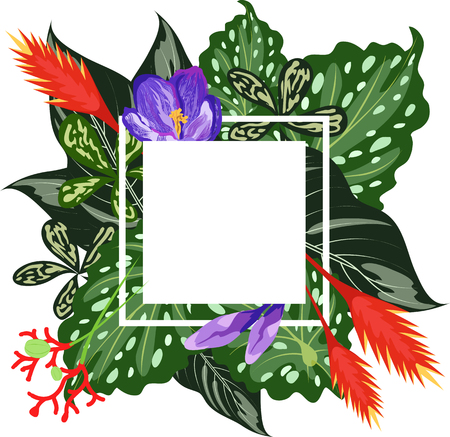 tropical leaves and flowers. frame Illustration