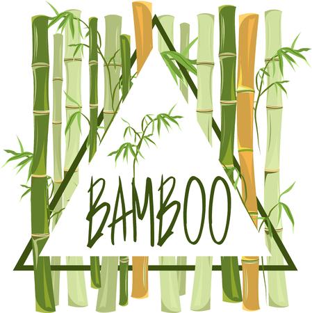 crone: bamboo. frame