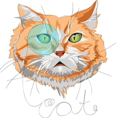 A cat with a monocle vector backgrounds  on a plain background.