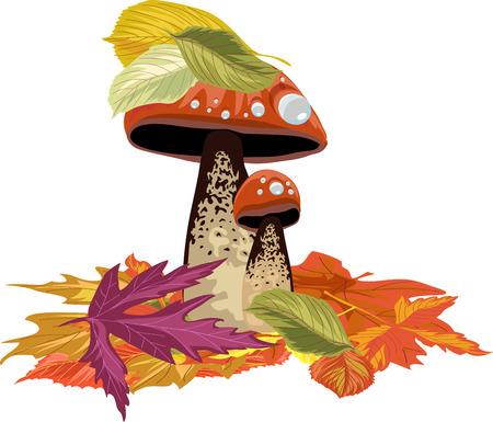cep: Mushrooms with autumn leaves design