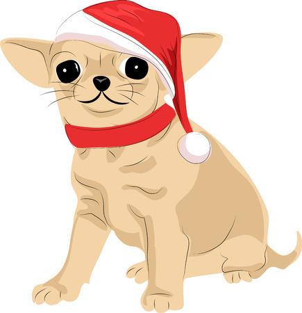 サンタクロースの帽子をかぶったあのテリア