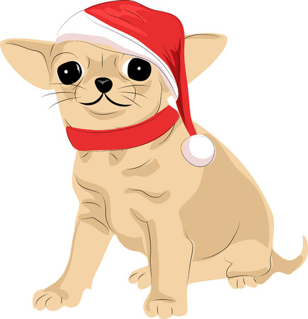 That terrier in a Santa Claus hat Фото со стока - 91712693