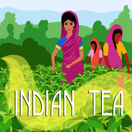 Indian tea. illustration Illustration