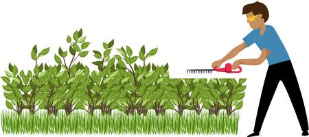 the gardener trims the bushes Vettoriali