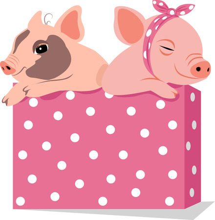 two funny pigs in a box. year of pig  イラスト・ベクター素材