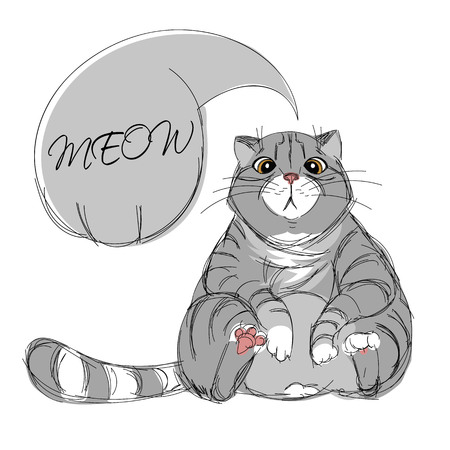 tabby cat. sketch. Doodle picture of cat