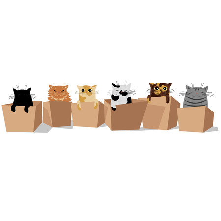 cute cats sitting in boxes. vector illustration with cats of different breeds